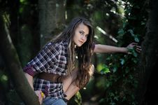 Free A Girl In A Tree Royalty Free Stock Photo - 26837005