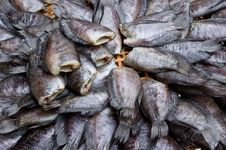 Free Salty Fish Stock Photography - 26838152