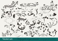 Collection Of Decorative Design Elements Stock Photo