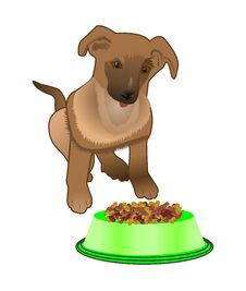 Free Dog Near Bowl With Food Royalty Free Stock Photos - 26845478