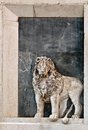 Free The Lion Of St Mark Stock Photo - 26850240