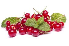 Free Tasty Red Currant Berries Royalty Free Stock Photos - 26854898