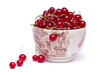 Free Tasty Red Currant Berries Royalty Free Stock Photos - 26855028