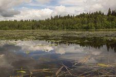 Free Wood Lake. Stock Photos - 26858013
