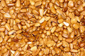 Free Pine Nuts Stock Image - 26863501