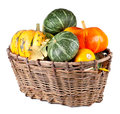 Free Harvested Pumpkins In A Large Basket Royalty Free Stock Images - 26874209