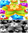 Free Water Lily Background Royalty Free Stock Image - 26876146
