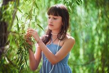 Girl Staying Near A Osier Royalty Free Stock Photography
