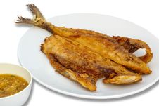 Free Seriola Fried Fish With Spicy Sauce Royalty Free Stock Images - 26872949