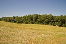 Free Hay Bales In A Green Field Royalty Free Stock Images - 26877319