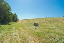 Free Hay Bale In A Green Field Royalty Free Stock Photos - 26877448