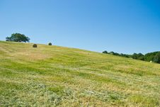 Free Hay Bales In A Green Field Stock Photo - 26877480