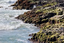 Free Lichen Covered Rocky Shore Stock Images - 26881104
