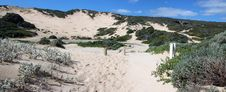Free Panorama Of Coastal  Dune Landscape Royalty Free Stock Images - 26881339