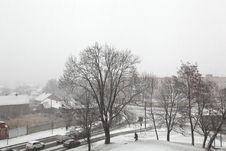 Free Snowfall Royalty Free Stock Photography - 26886577
