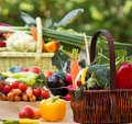 Free Organic Vegetables Stock Image - 26899431