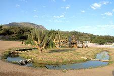 Free Ranch In Arizona Stock Photo - 2690190