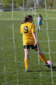 Free Soccer Goalie Royalty Free Stock Photo - 2691625