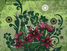 Free Floral Background Series Stock Photo - 2692020