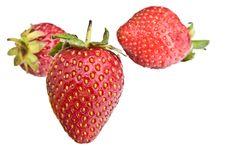 Strawberrys Stock Image