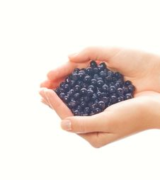 Free Handful Of Blueberries Stock Photo - 2696820