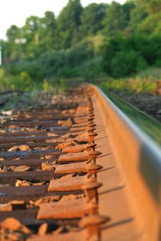 Free Rail Spikes Stock Image - 2698261