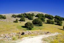 Free Sicilian Landscape Royalty Free Stock Image - 2699576