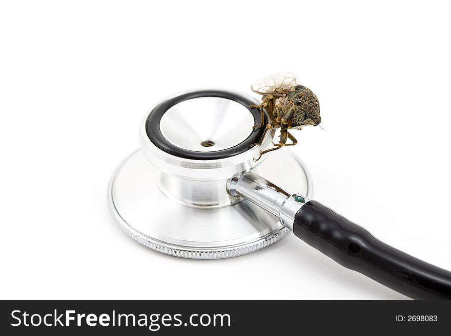 Cicada with stethoscope