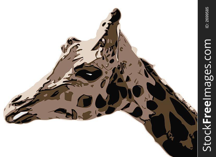 Giraffe - illustration