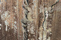 Free Background Detail Of Old Rock Stock Images - 26902974