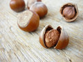 Free Hazelnuts Stock Image - 26903801
