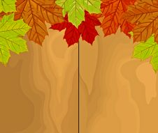 Free Autumn Leaves Over Wood Stock Image - 26904081