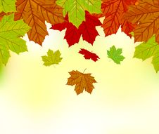 Free Falling Autumn Leaves Background Royalty Free Stock Image - 26904416