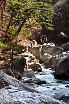 Free Autumn Mountain Stream Royalty Free Stock Photo - 26910635