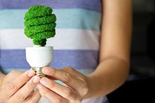 Free Hand Holding Eco Light Bulb Royalty Free Stock Photography - 26910927