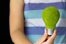 Free Hand Holding Eco Light Bulb Royalty Free Stock Images - 26911269