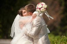 Free Bride And Groom Kissing Royalty Free Stock Photo - 26942895