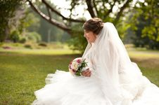 Free Young Beautiful Bride Stock Images - 26942904
