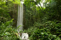 Free Big Waterfall In A Forest Royalty Free Stock Image - 26952706