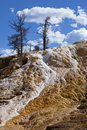 Free Mammoth Hot Springs Thermal Flow Royalty Free Stock Images - 26954329