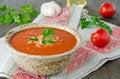 Free Tomato Soup Stock Image - 26958691
