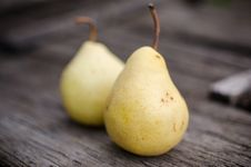 Free Pears Stock Photography - 26953312