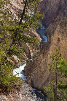 Free Yellowstone River Canyon Stock Photography - 26955162
