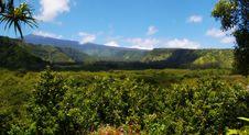 Free Maui Mountain Vista View Royalty Free Stock Image - 26955646