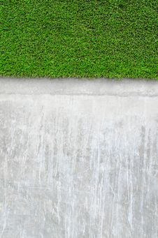 Free Artificial Grass On A Cement Wall Royalty Free Stock Photos - 26958008