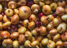 Free Onions Background Stock Photos - 26958293