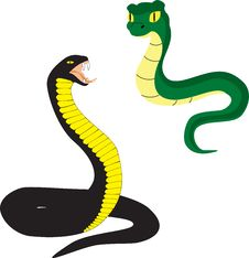Free Two Cartoon Snakes Royalty Free Stock Photos - 26963298
