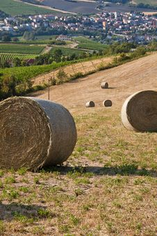 Free Romagna Countryside Stock Photography - 26964882
