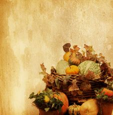 Free Old Paper With Pumpkins Royalty Free Stock Images - 26969409