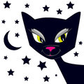 Free Black Cat Stock Photography - 26979052